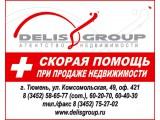 "Логотип ООО АН ""ДЕЛИС Групп"", LLC ""DELIS Group"""