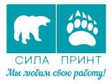 Логотип Сила Принт